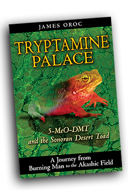 Tryptamine Palace: 5-MeO-DMT and the Sonoran Desert Toad: A Journey from Burning Man to the Akashic Field